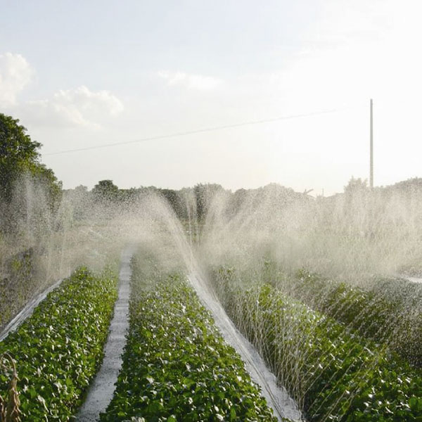 Micro Spray Tube / Irrigation Spray Tube
